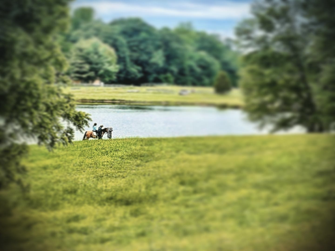 A girl rides a horse in the grass beside a pond